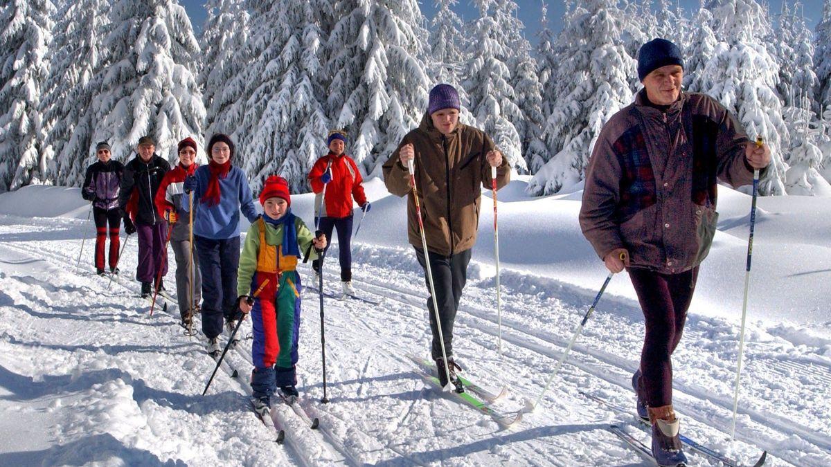 Eine Gruppe Ski-Langläufer in der Natur