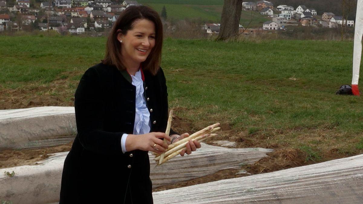Michaela Kaniber beim Spargelstechen