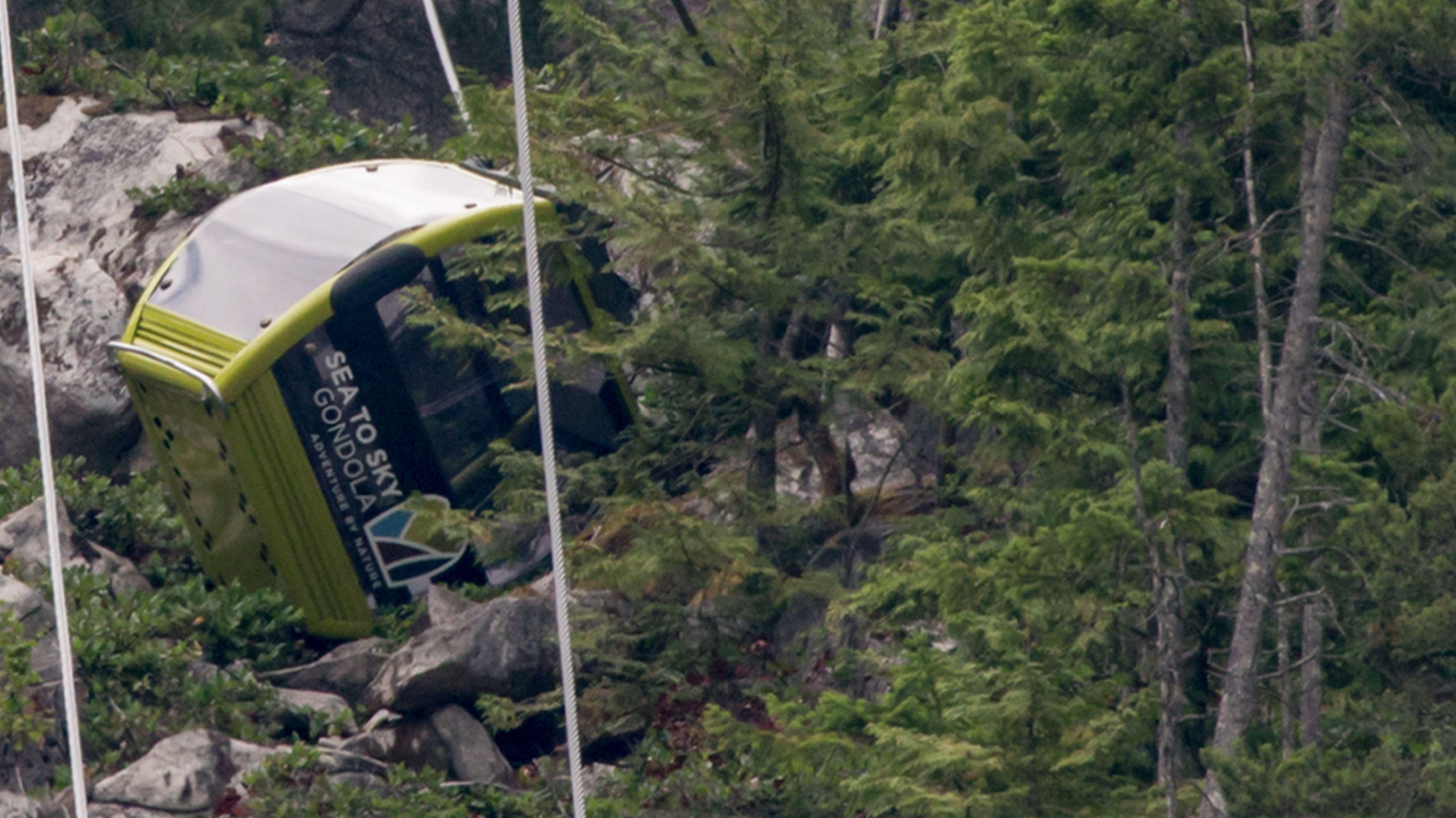 Einen Godel liegt im Gelände in nSquamish