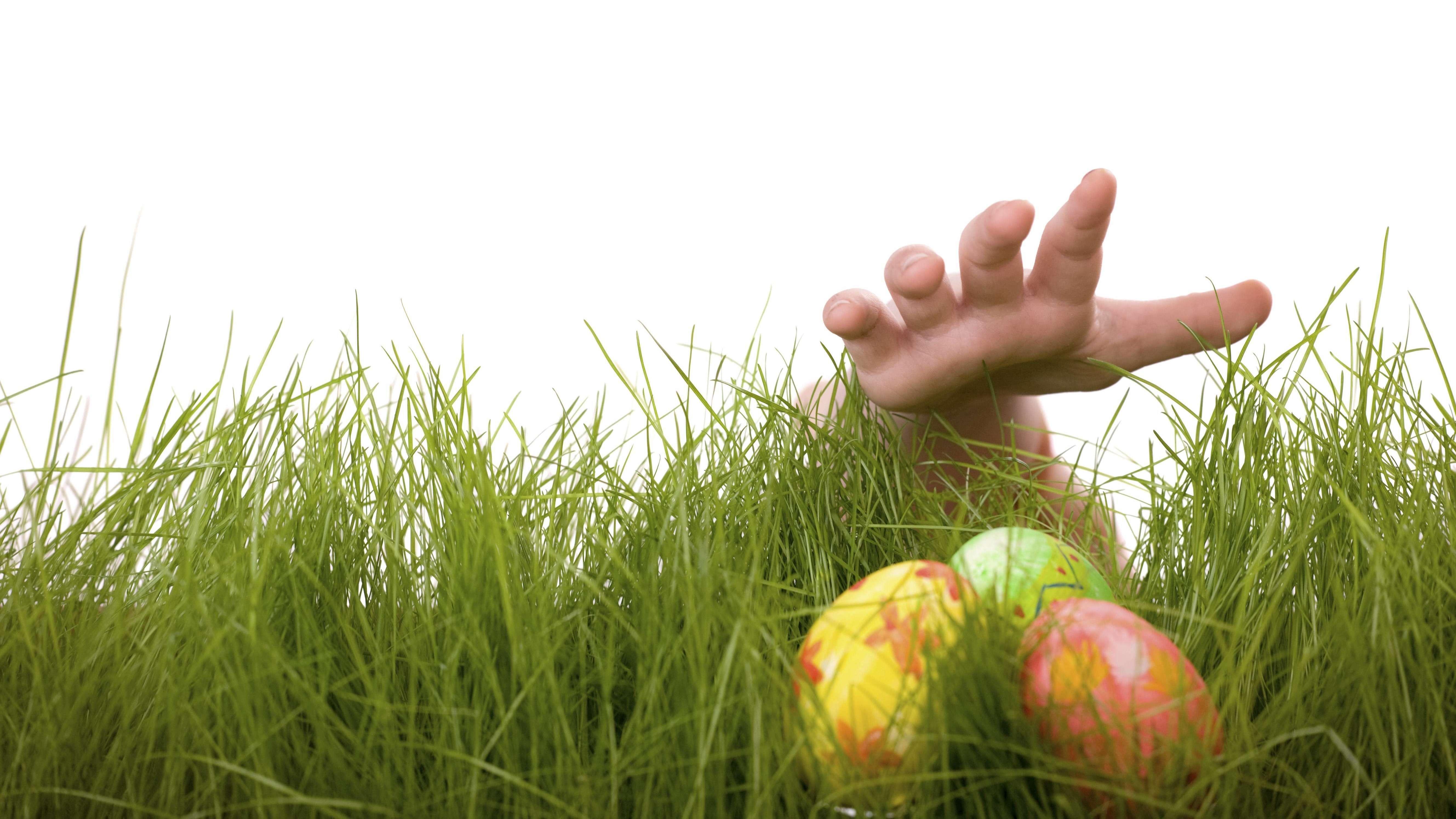 Eine Hand greift nach Ostereiern in einer Wiese (Symbolbild).