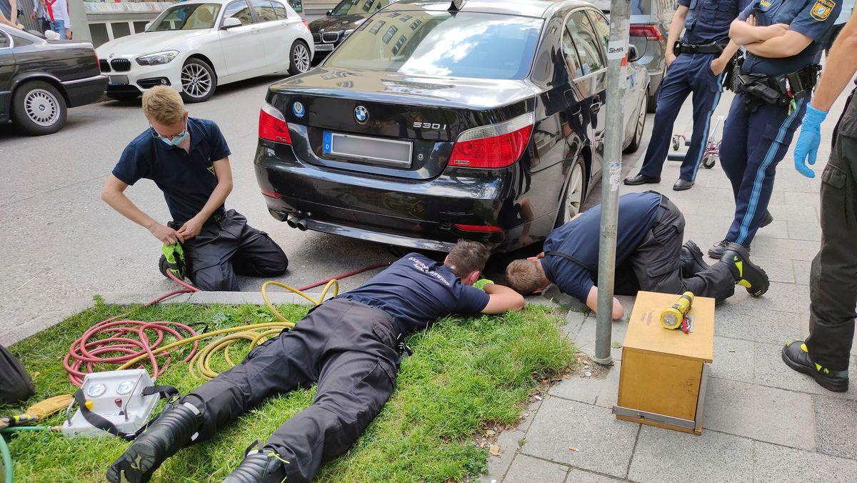 Münchner Feuerwehr rettet Küken aus Gully