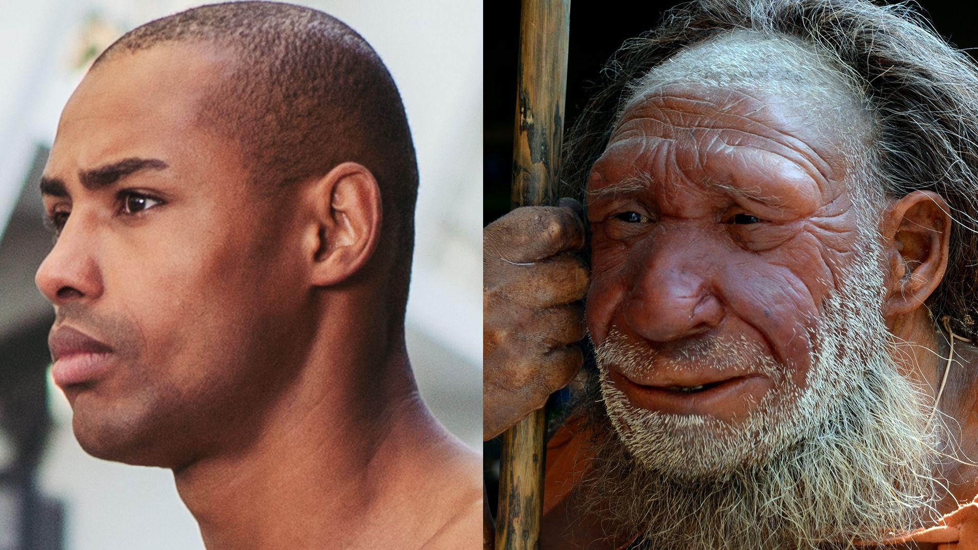 Gegenüberstellung eines modernen Afrikaners und die Vorstellung von einem Neandertaler.