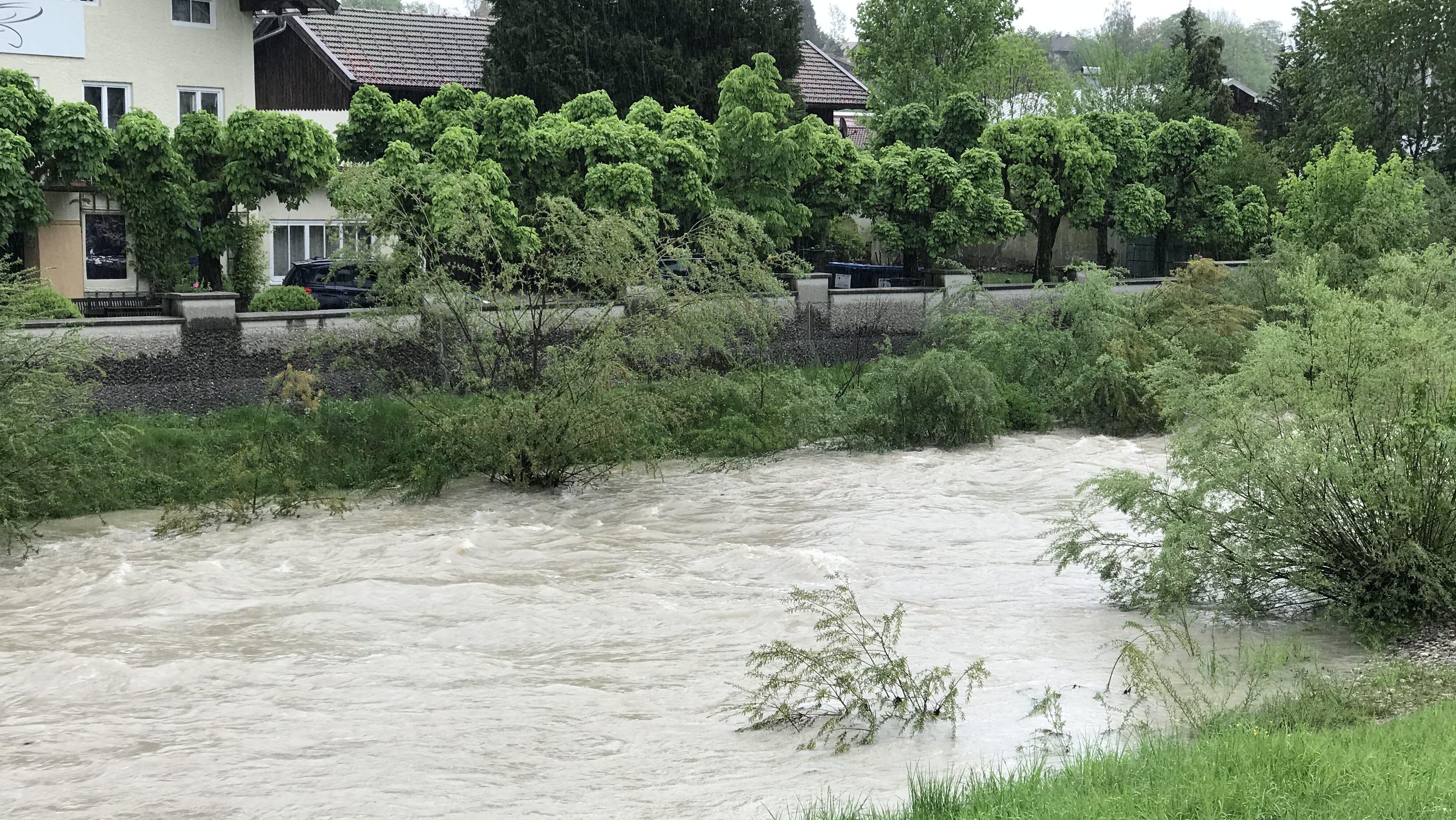 Hochwasser der Traun bei Siegsdorf