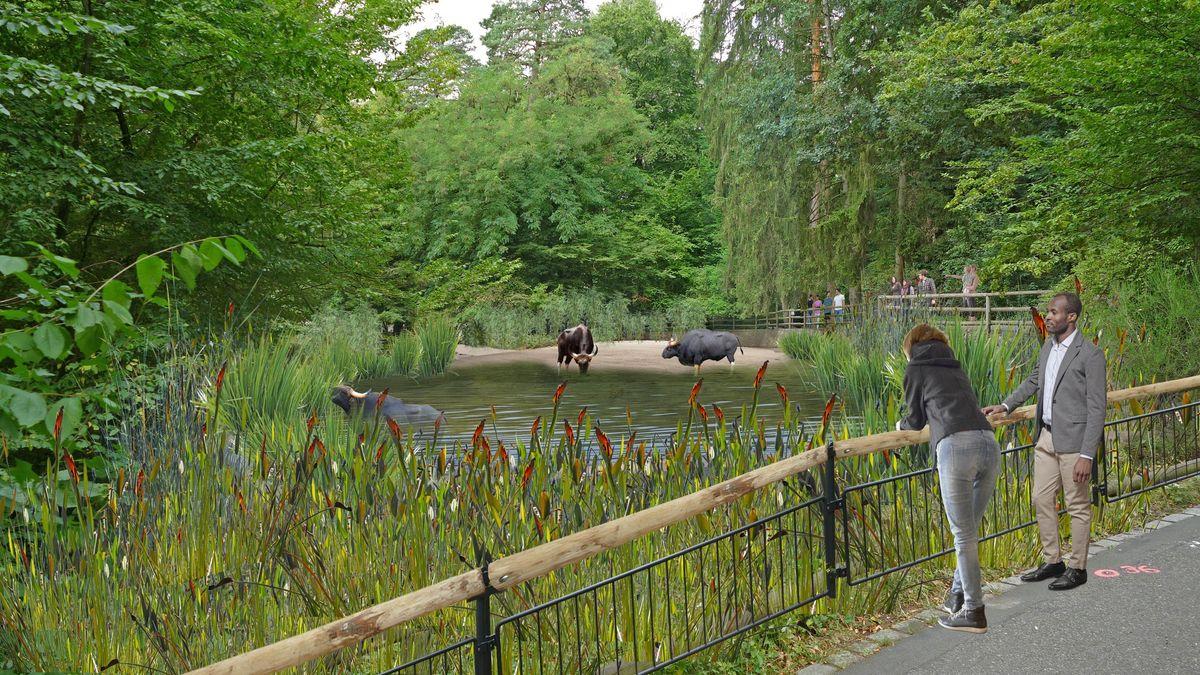 Animation der umgestalteten Mittelspange des Tiergartens