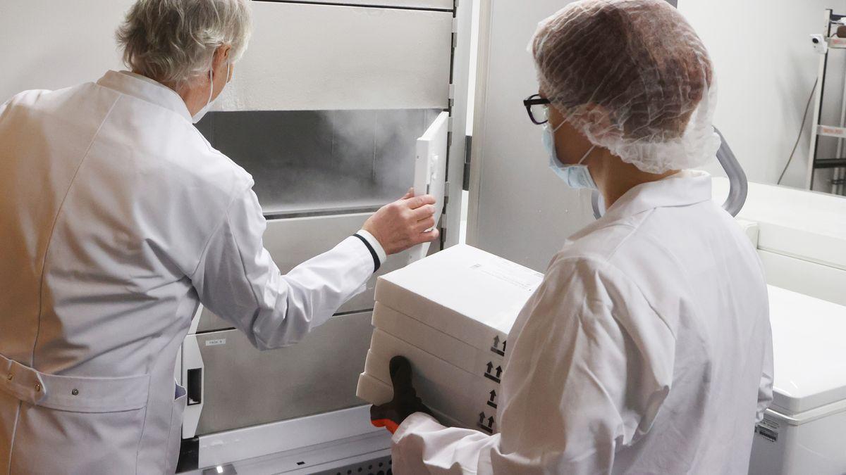 Kartons mit Impfdosen werden in einen Gefrierschrank eingelagert