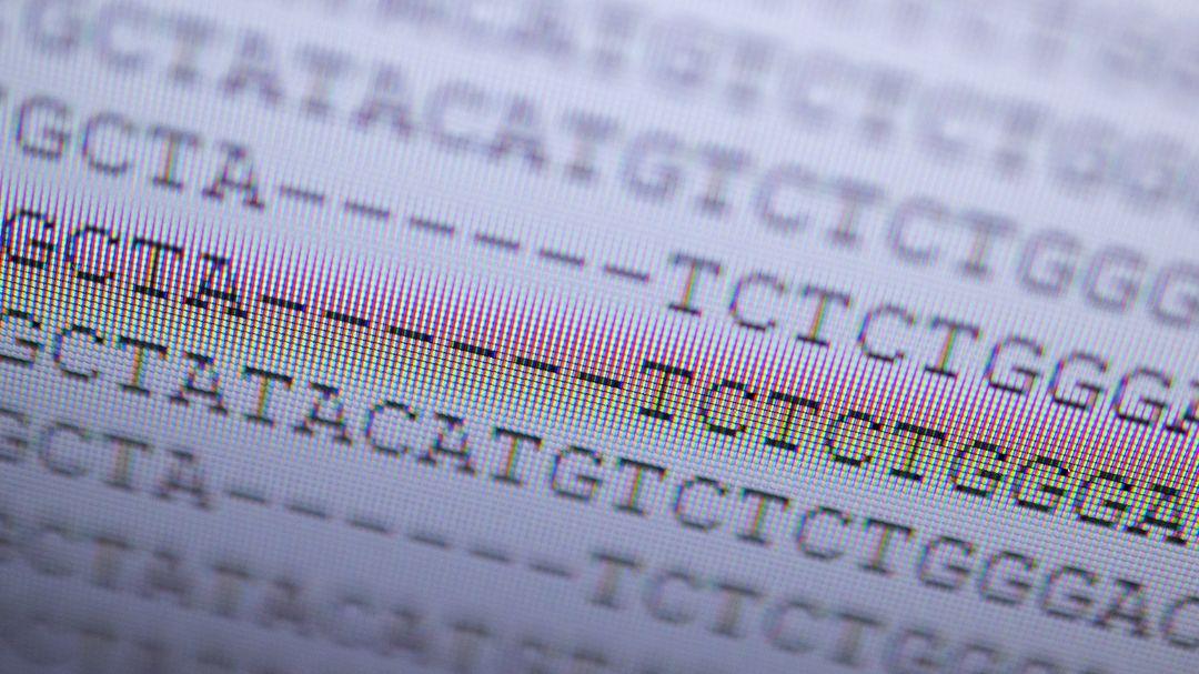 DNA-Analyse der britischen Variante eines mutierten Coronavirus.