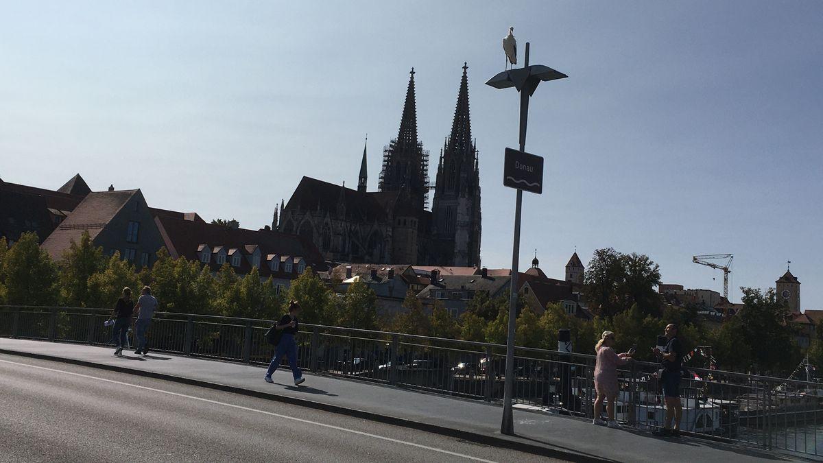 Begeisterte Passanten machen Fotos von dem jungen Storch, der mitten in Regensburg Pause machte.