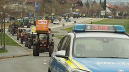 Landwirte protestierten mit einem Traktorkonvoi   Bild:Privat