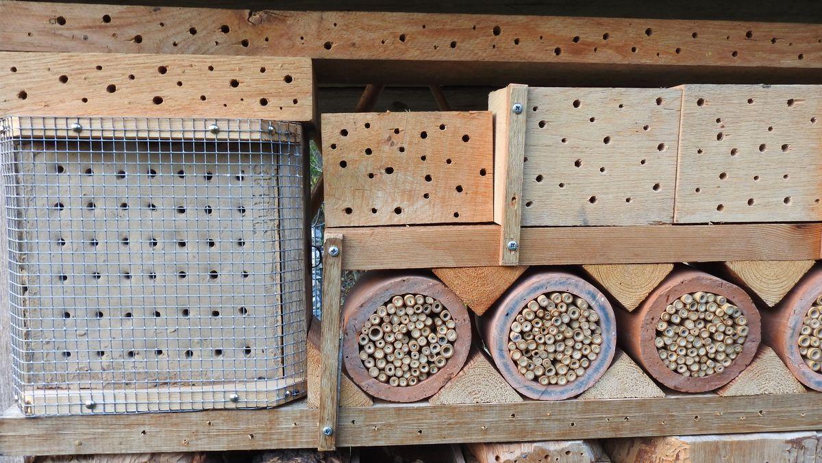 Ein Insektenhotel, das Wildbienen Florfliegen und Hummeln gerne annehmen.