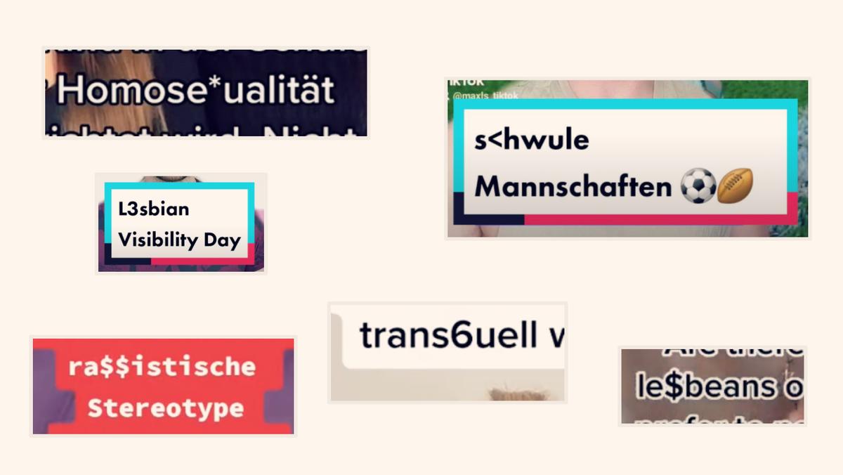 Screenshots zeigen unterschiedliche Schreibweisen für Begriffe aus der LGBTQ- und Social Justice-Community