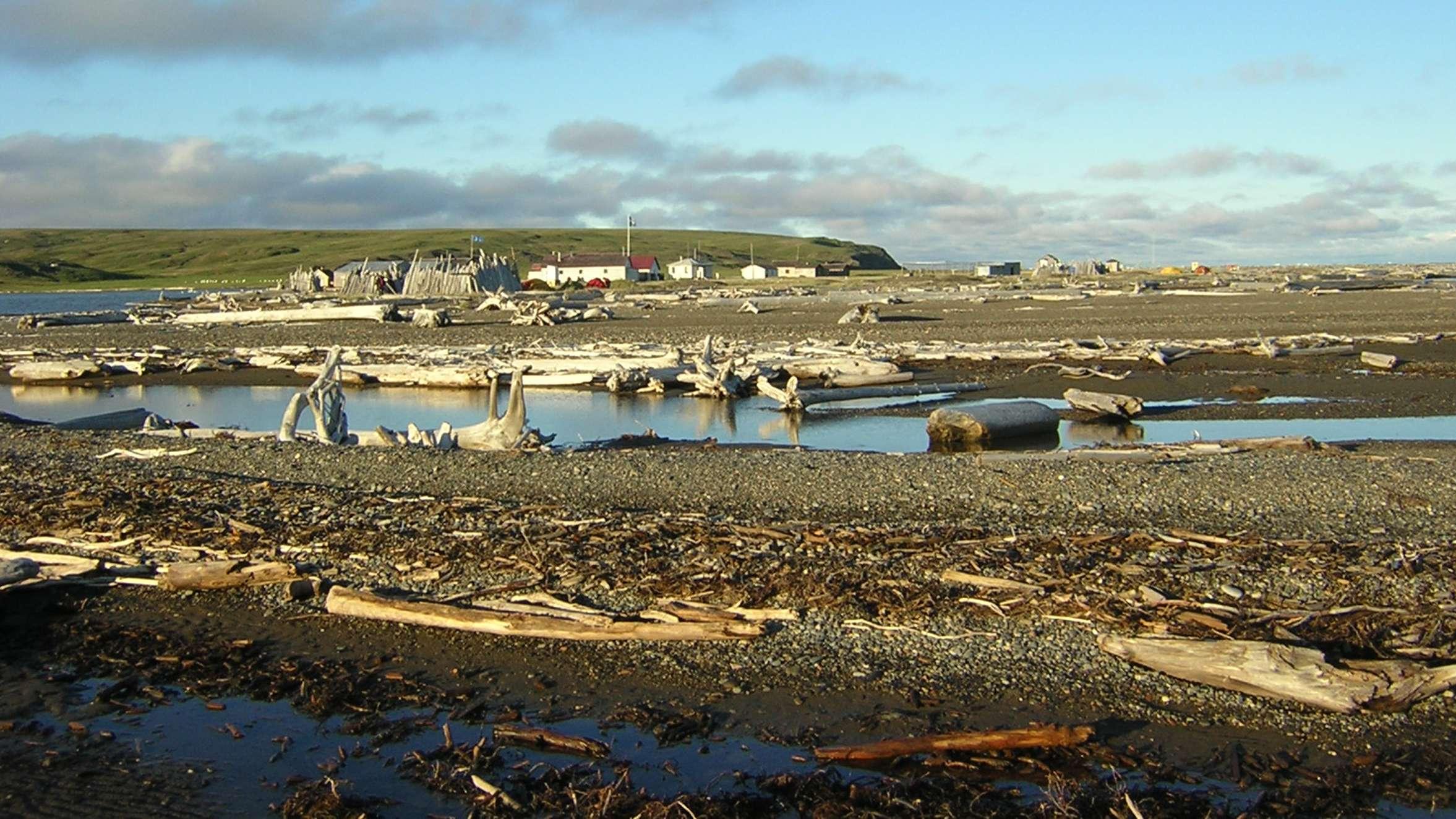 Herschel Island, eine kanadische Insel in der Beaufortsee, die Teil des Arktischen Ozeans ist