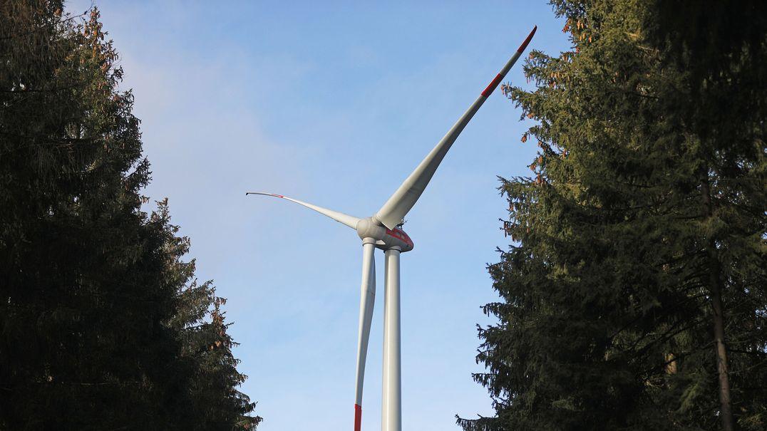 Die Bayerischen Staatsforsten: Laut einem Gutachten gibt es hier wenig Potenzial für 100 neue Windräder.