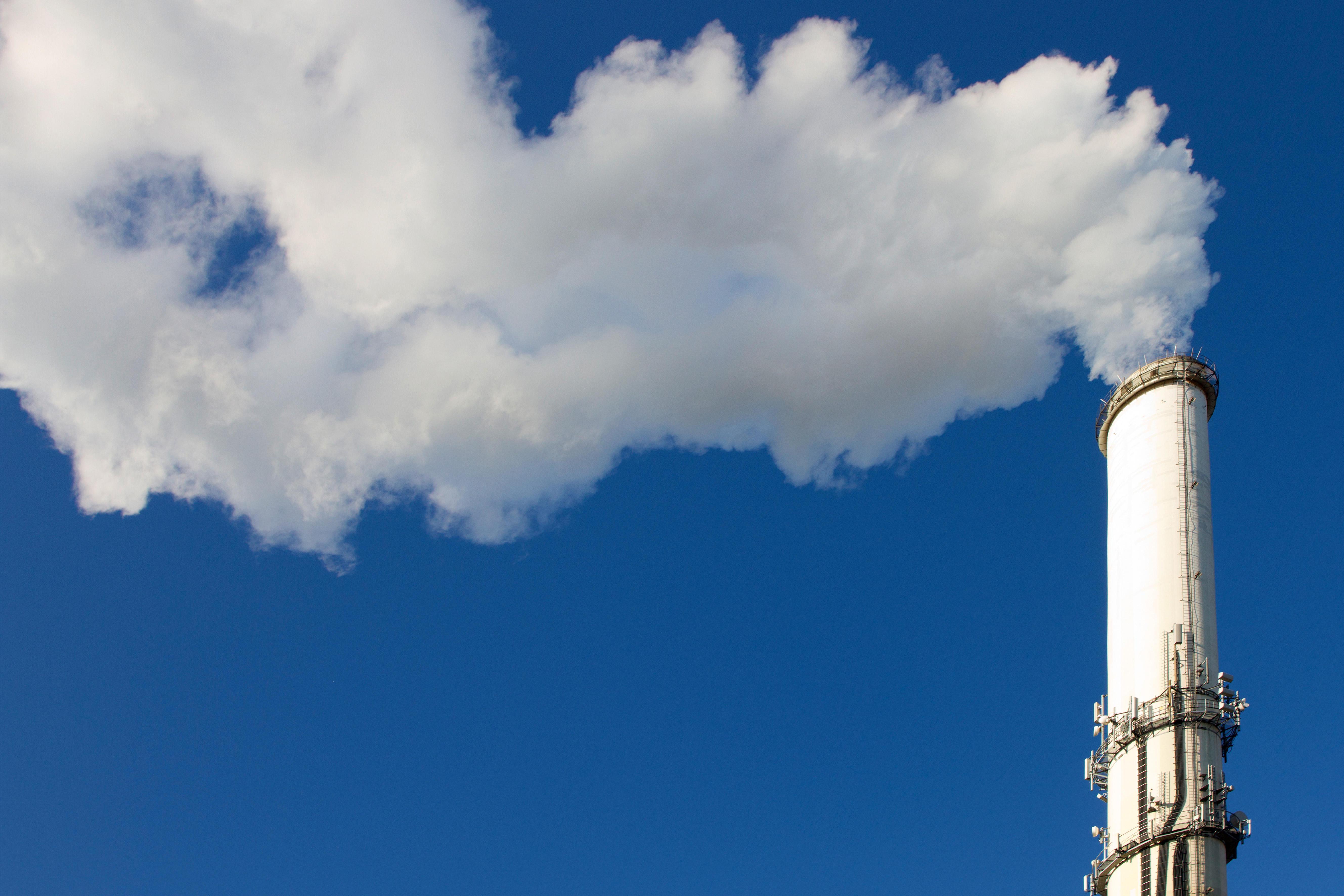 Pläne der Bundesumweltministerin: Schulze für CO2-Steuer mit