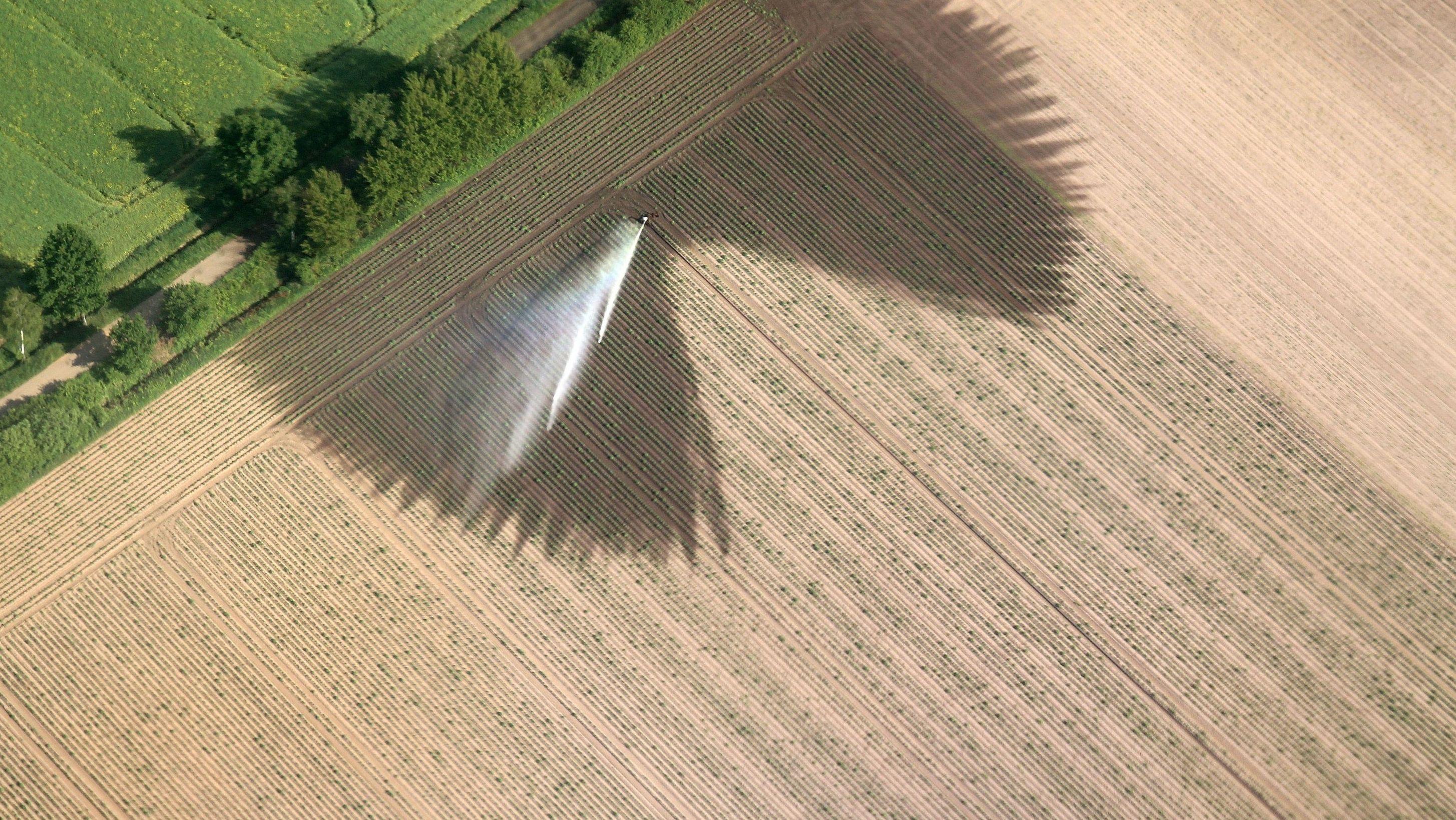 Ausgetrocknetes Feld wird bewässert
