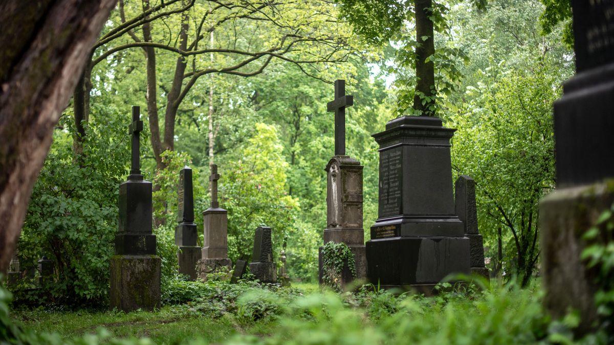 Grabsteine unter Bäumen auf dem Alten Nordfriedhof in München.