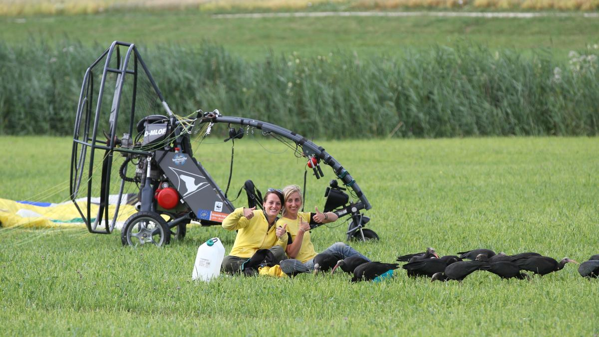 Im Training: die beiden Waldrapp-Ziehmütter Corinna Esterer und Anne-Gabriela Schmalstieg und Jungvögel auf der Wiese