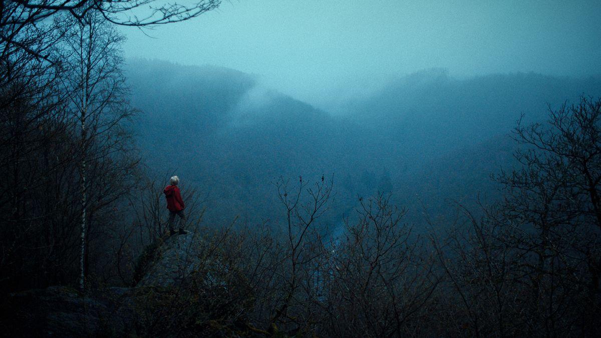 Frau in rotem Mantel auf einem Felsen Wald blickt in Schlucht in düsterem Nebel.