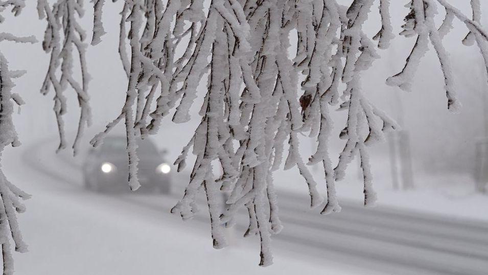 Verschneite Bäume und Straßen