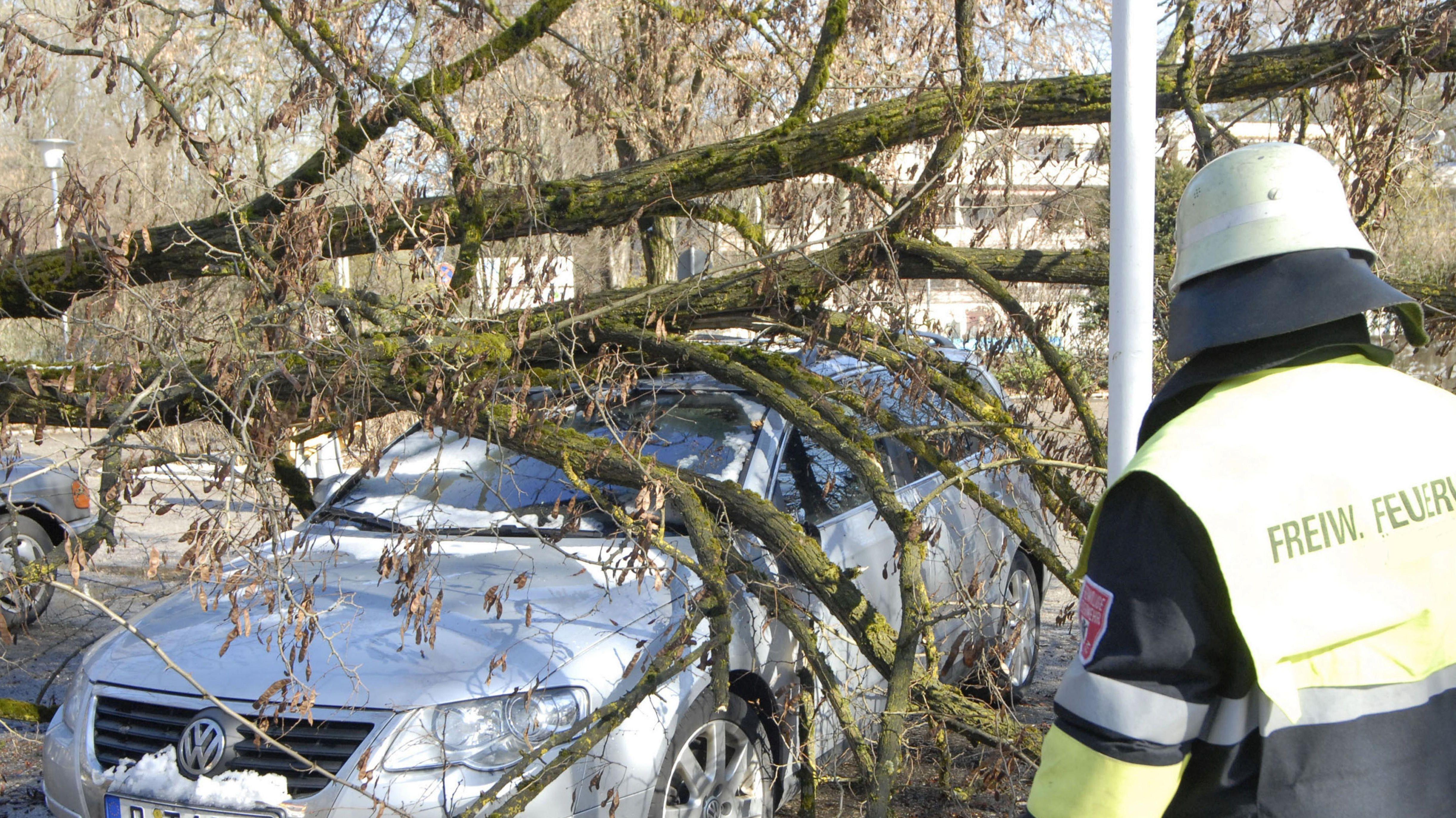 Baum liegt auf einem silbernen Kleinwagen. Daneben steht ein Mann von der Freiwilligen Feuerwehr.