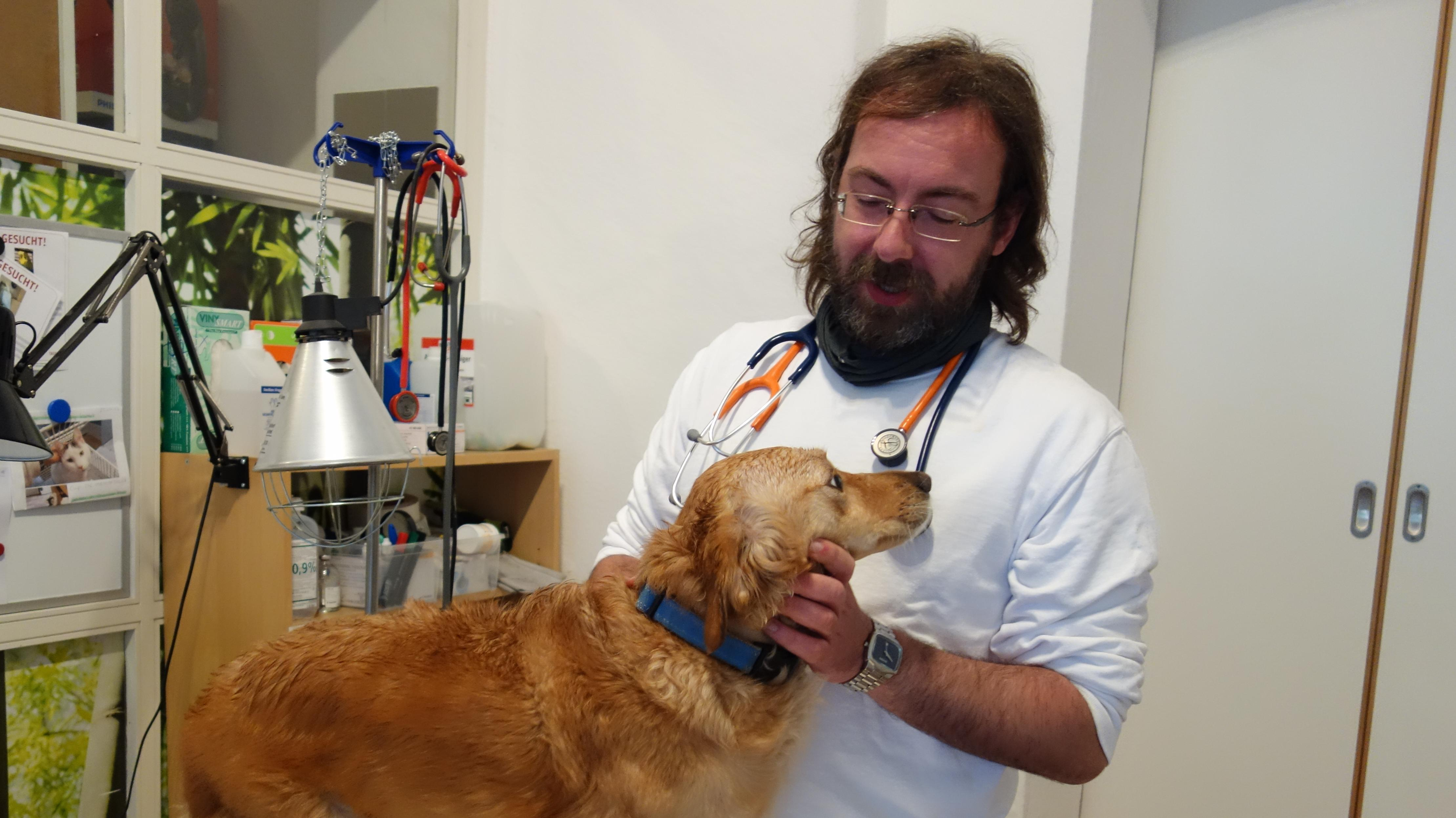 Tierarzt Mathias Beyer untersucht Hündin Daphne. Er arbeitet seit 2014 bei der Tierrettung in München und hat selber zwei Hunde.