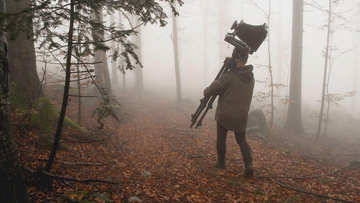 Man sieht einem Mann von hinten, der mit einem Stativ und einer schweren Kamera durch einen nebligen Wald läuft.