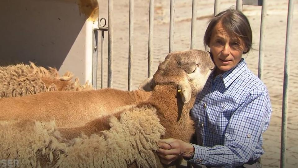 Schafzüchterin Angelika Hummel