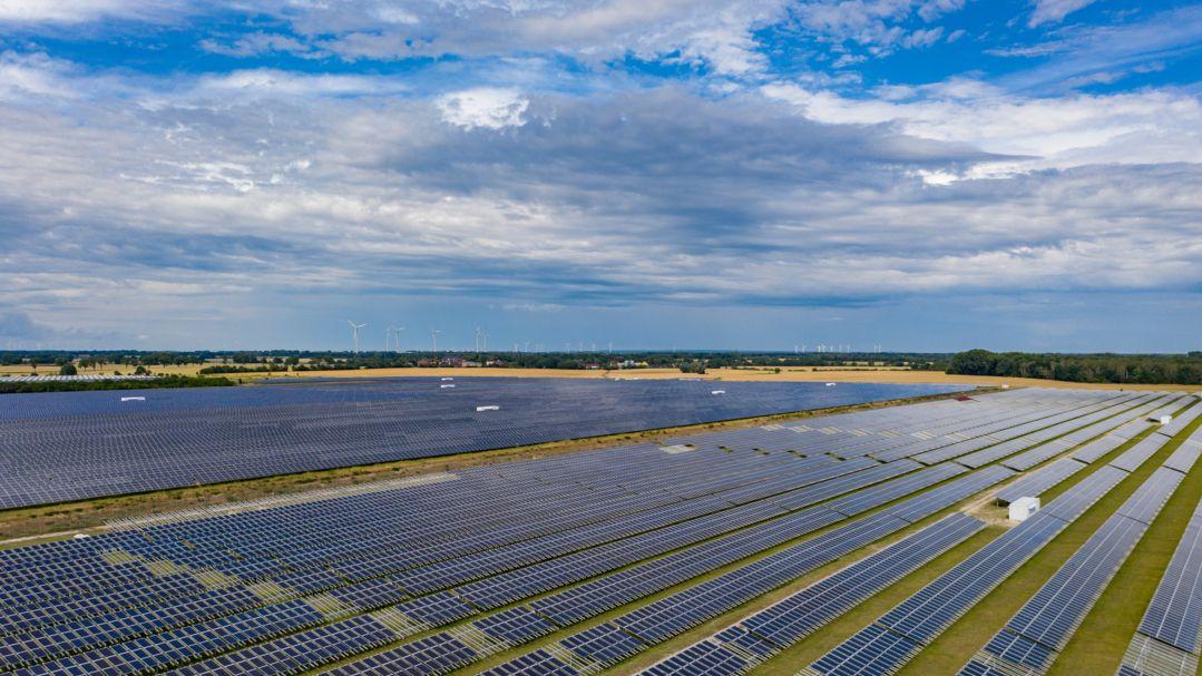 Ein großes Feld mit Photovoltaikanlagen zur Erzeugung von Solarenergie
