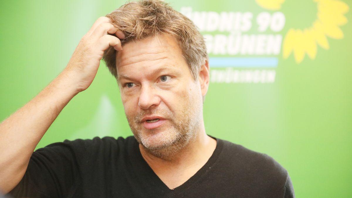 Der Co-Vorsitzende der Grünen, Robert Habeck.