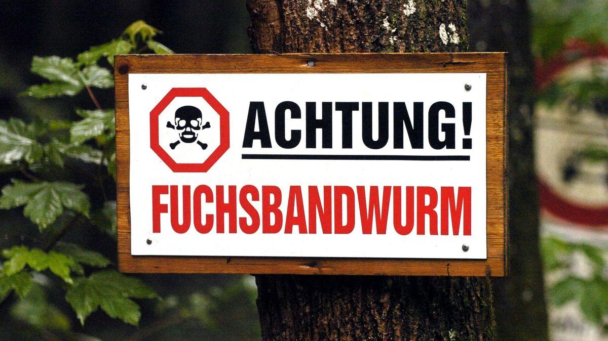 Warnschild: Achtung! Fuchsbandwurm