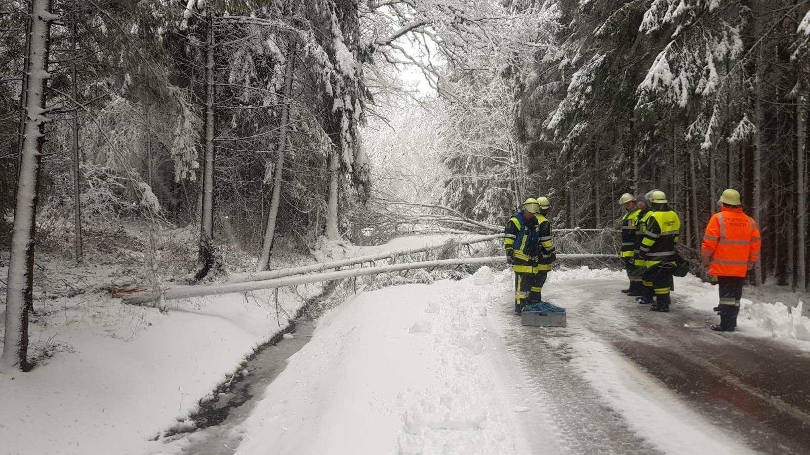 Von Bäumen blockierte Straße im Landkreis Dingolfing-Landau