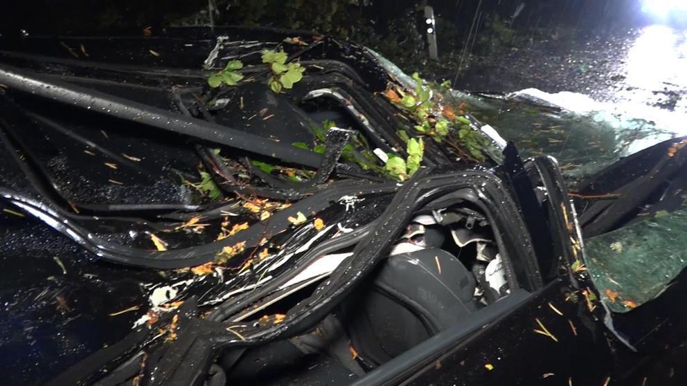 von einem Baum zerstörtes Auto   Bild:BR