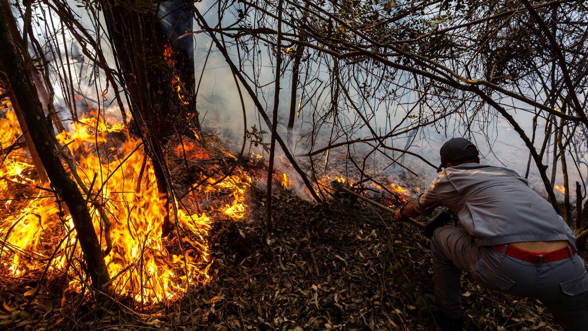 Ein Feuerwehrmann versucht, einen Waldbrand in Jaragua, der Heimat des indigenen Volkes der Guarani, in der Nähe von Sao Paulo, zu löschen.
