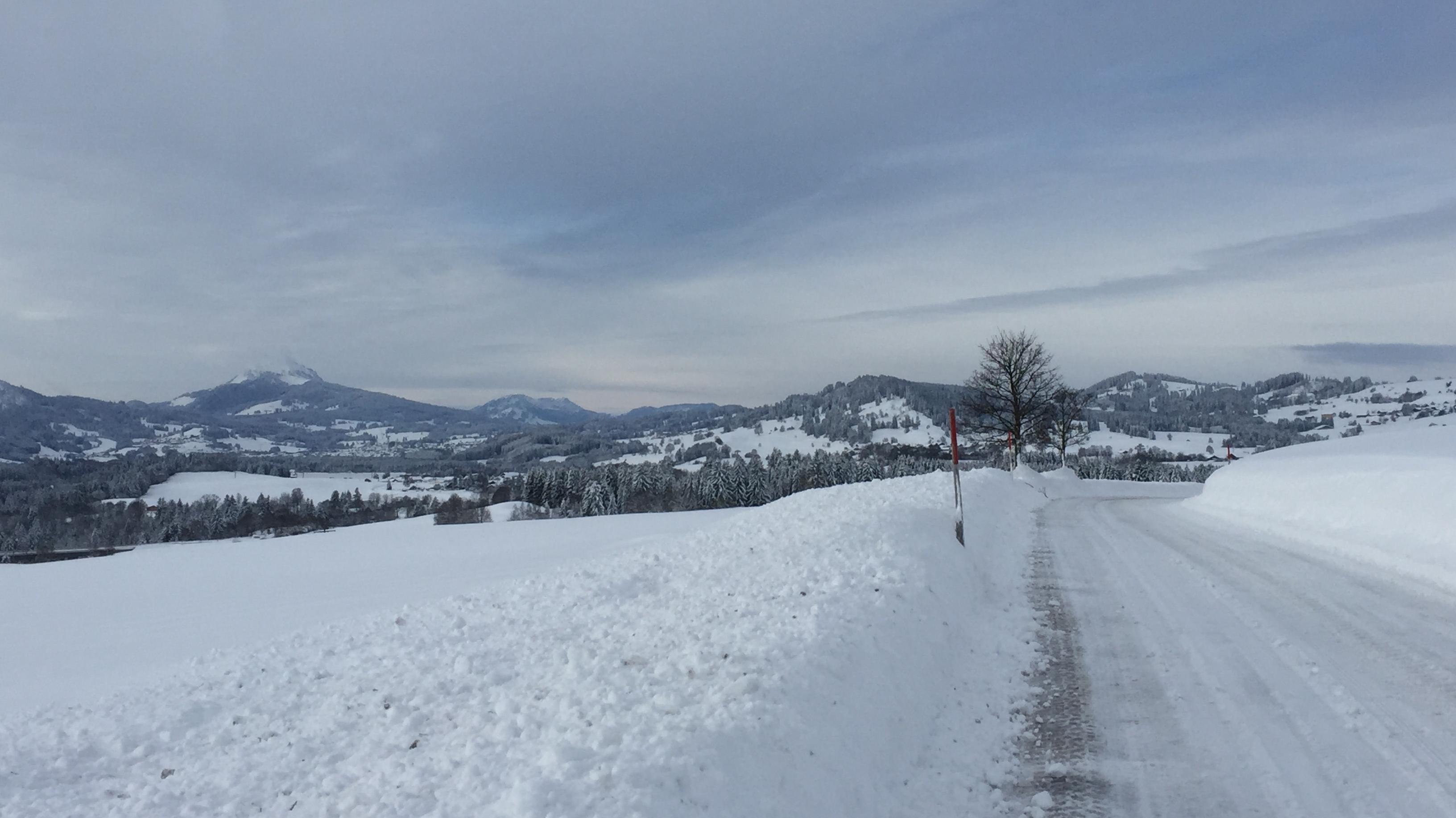 Blick von Schnakenhöhe bei Maria Rain Richtung Süd-West. Links: Der Grünten, Wächter des Allgäus, schon wieder zugezogen.