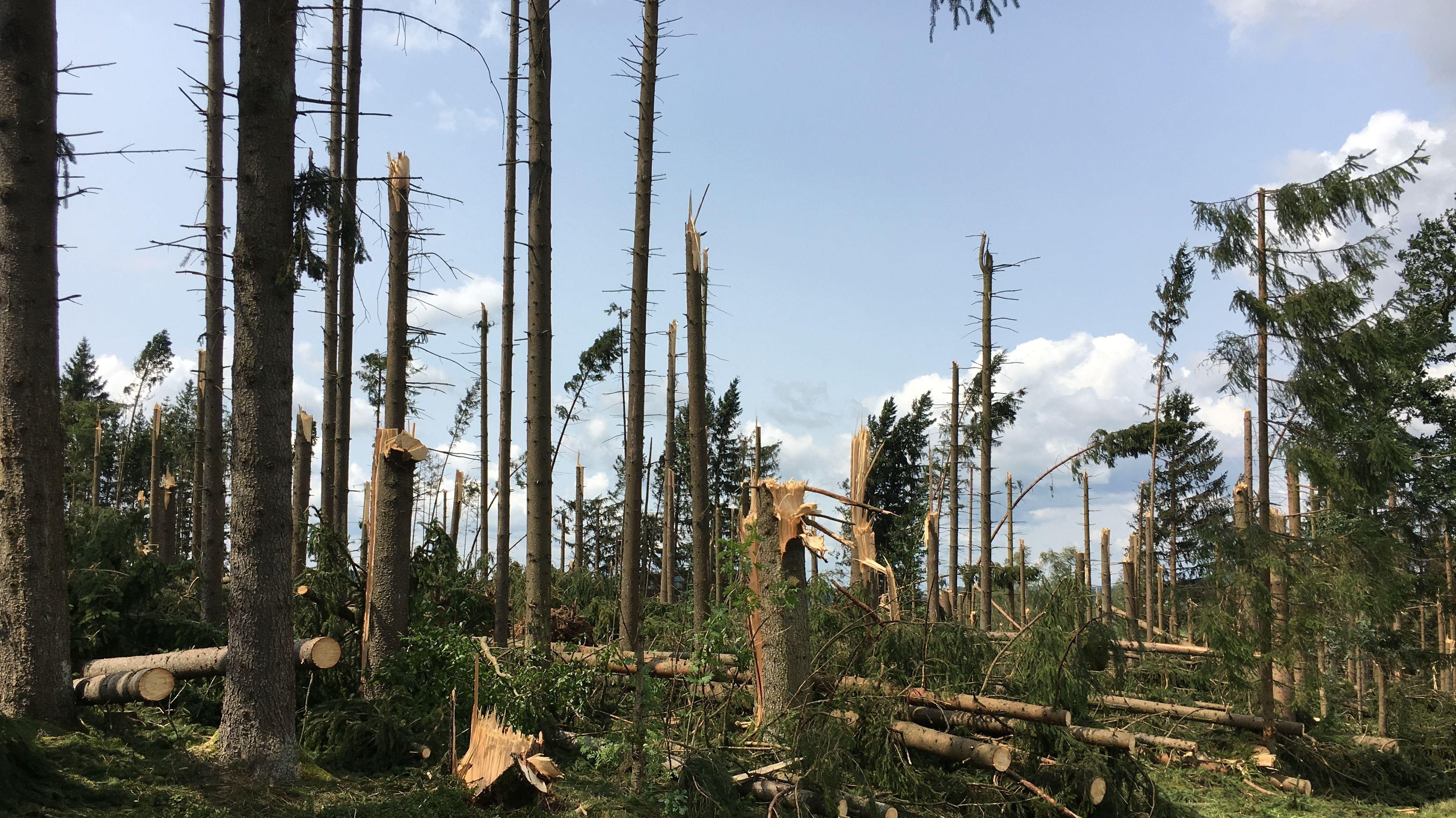 Klimawandel: Wetterextreme werden auch in Ostbayern  weiter zunehmen