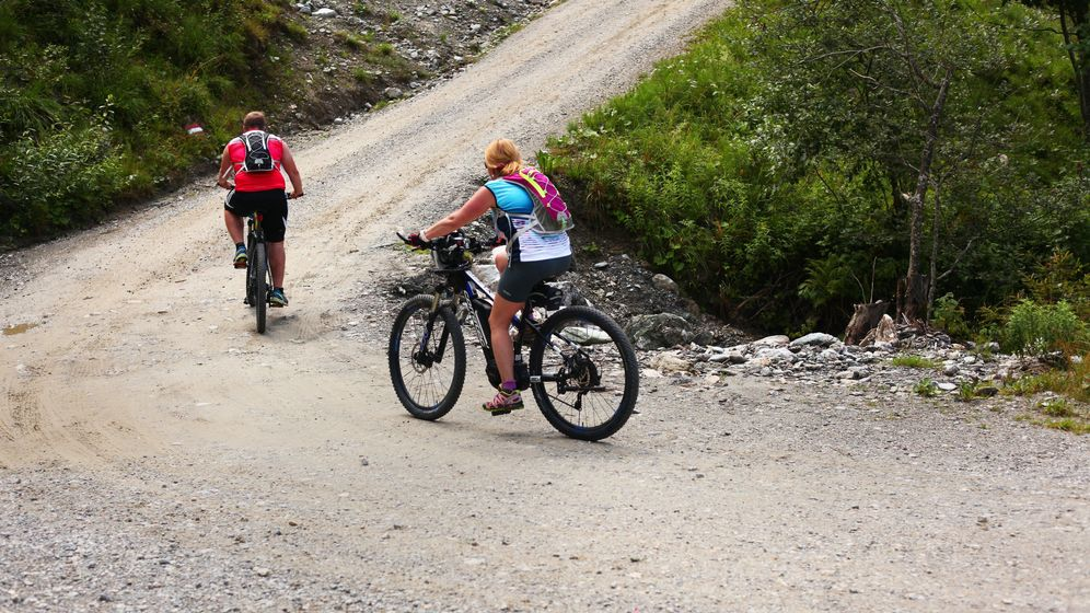 E-Biker in den Alpen  | Bild:dpa / Wolfram Steinberg