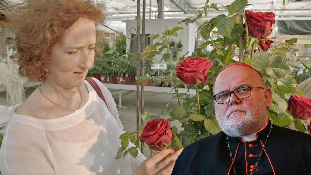 """Könnte diese Rosen-Züchtung bald den Namen """"Reinhardia"""" tragen?"""