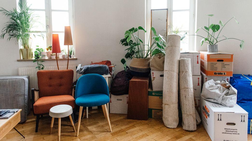 Möbel, Teppiche, Pflanzen und Umzugskartons in einer leeren Wohnung.