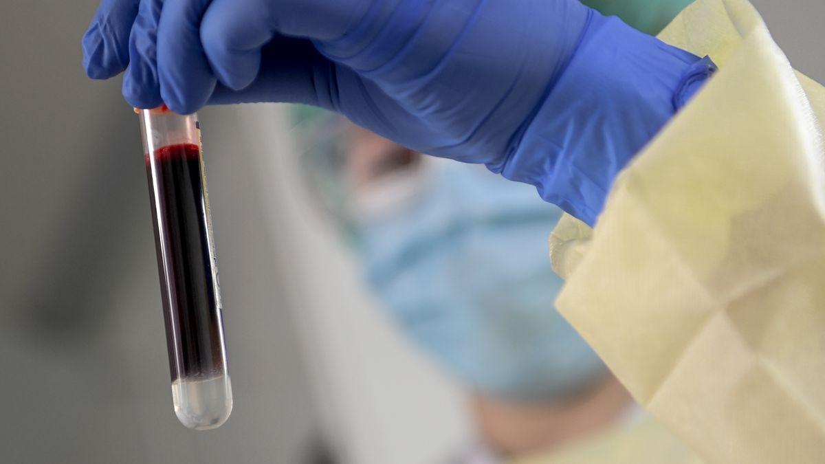 Blutporbe