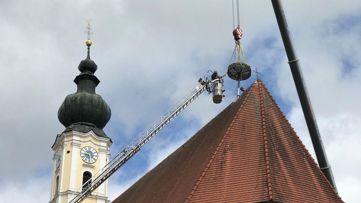 Eine Nisthilfe wird auf das Kirchendach von Rotthalmünster gehievt