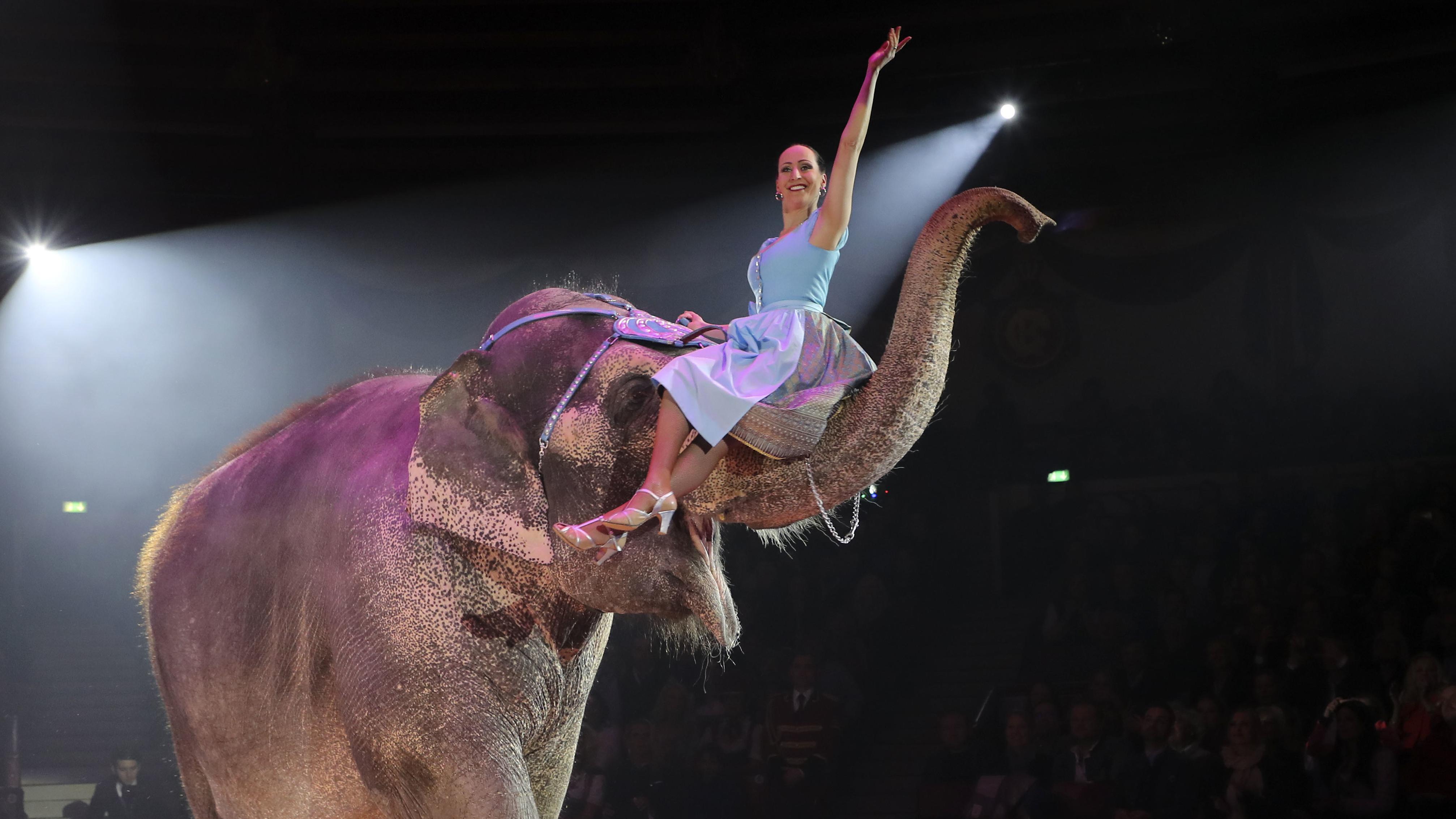 Jana Mandana Lacey-Krone auf einem Elefanten