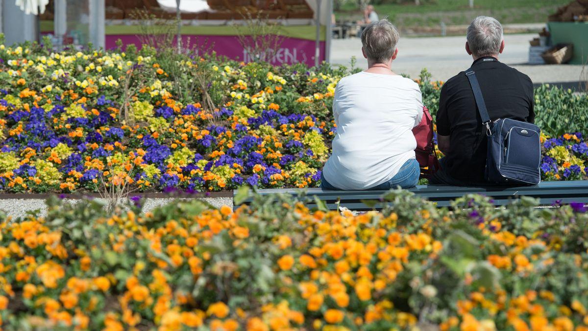 Zwei Menschen zwischen Blumenbeeten auf einer Landesgartenschau