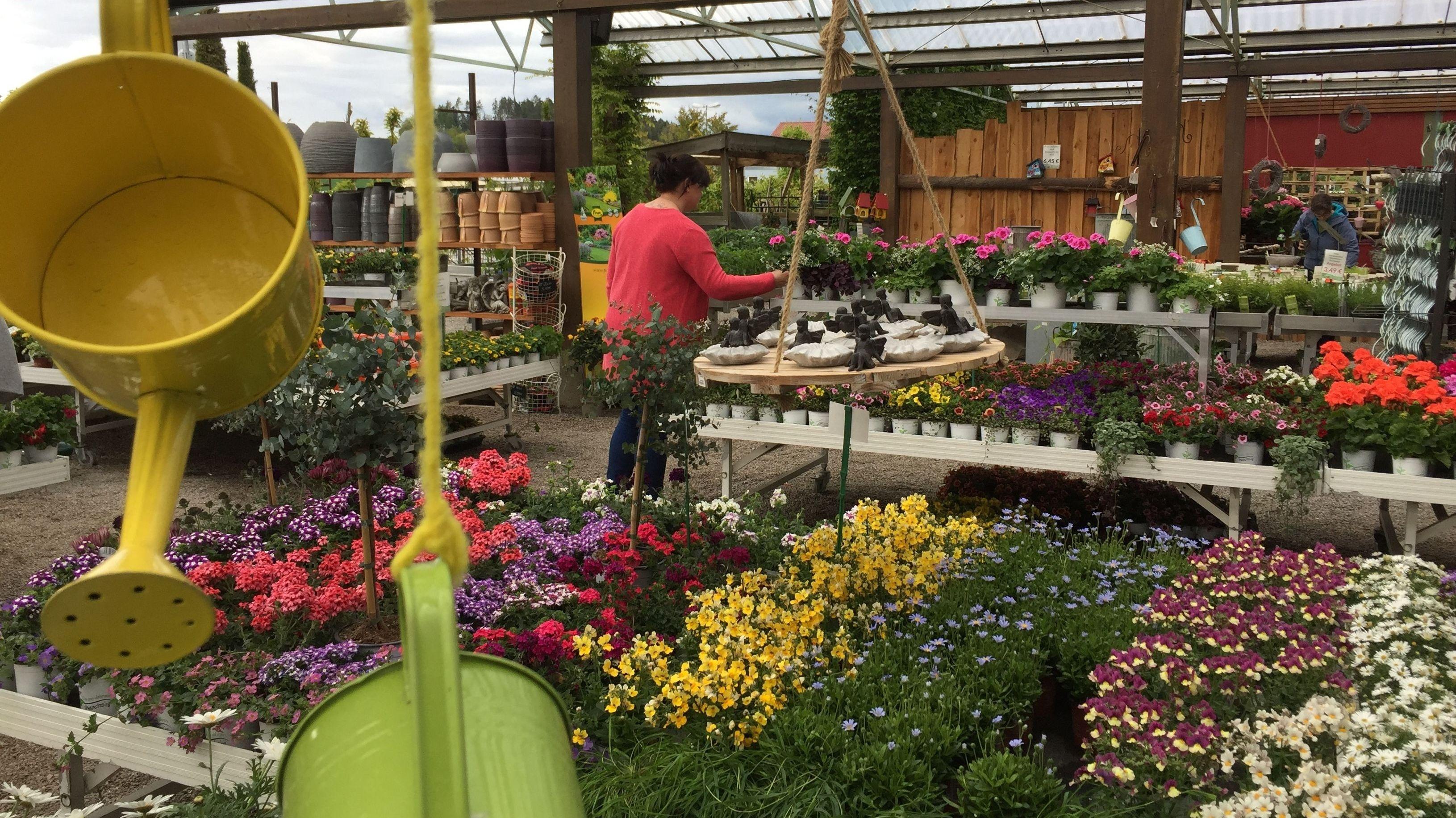Ein Blick in die Blumenabteilung des Gartenmarkts Pohl in Cham.
