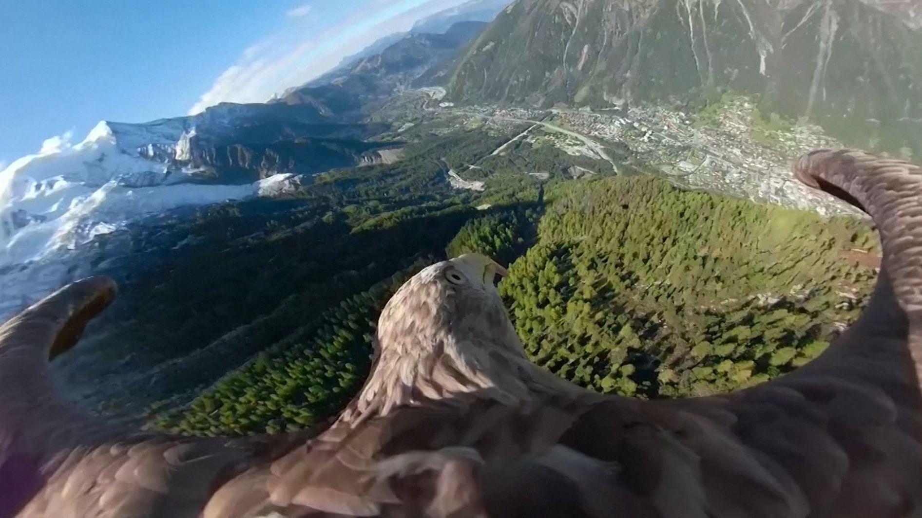 Spektakuläre Aufnahmen aus der Adlerperspektive: Die französischen Alpen bei Chamonix und Bilder von der Zugspitze.