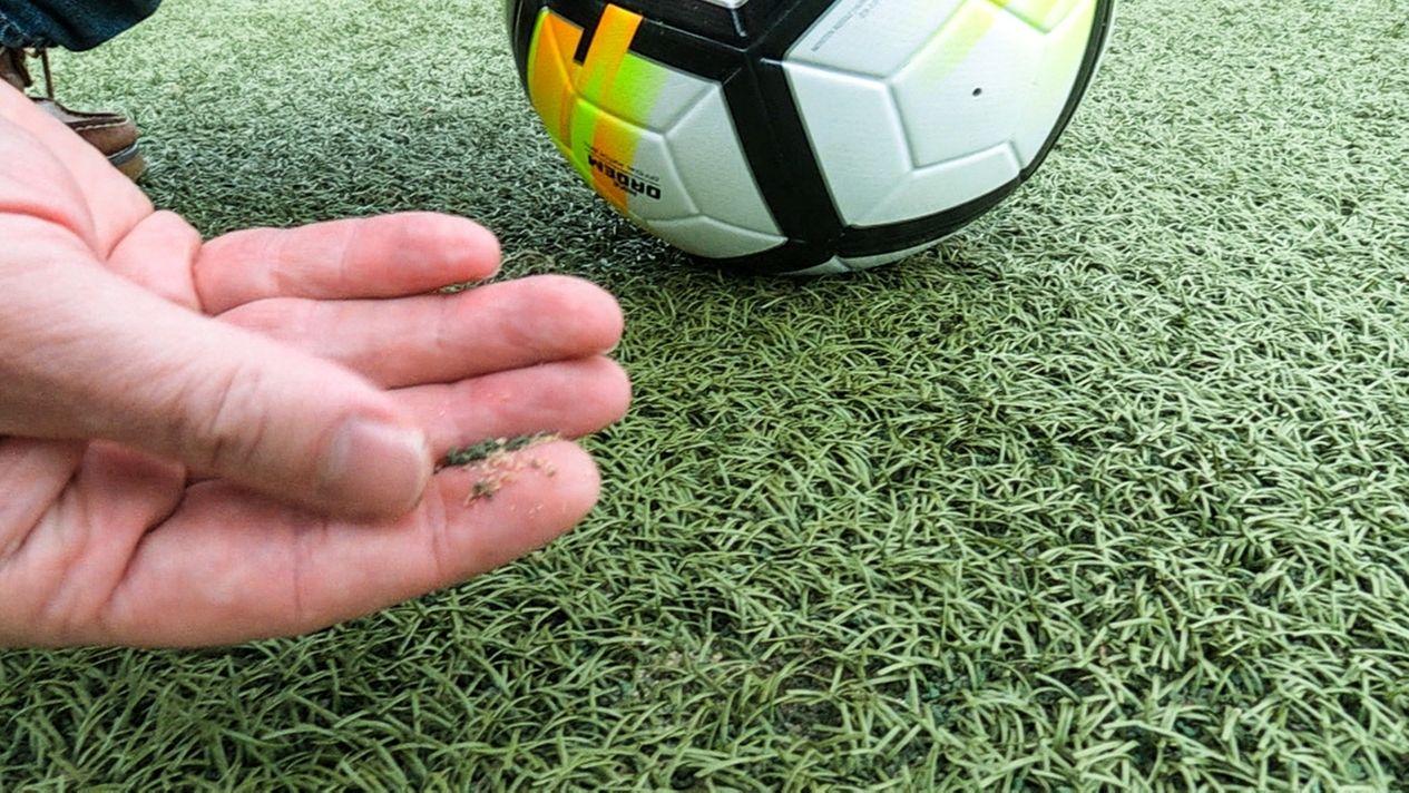 Kunstrasengranulat auf einer Hand, daneben Fußball auf dem Kunstrasenplatz des SC Baldham-Vaterstetten.