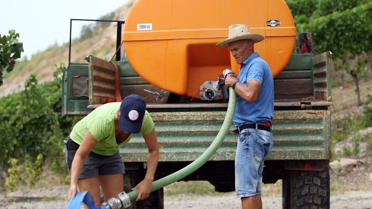 Winzer bewässern ihren Weinberg.