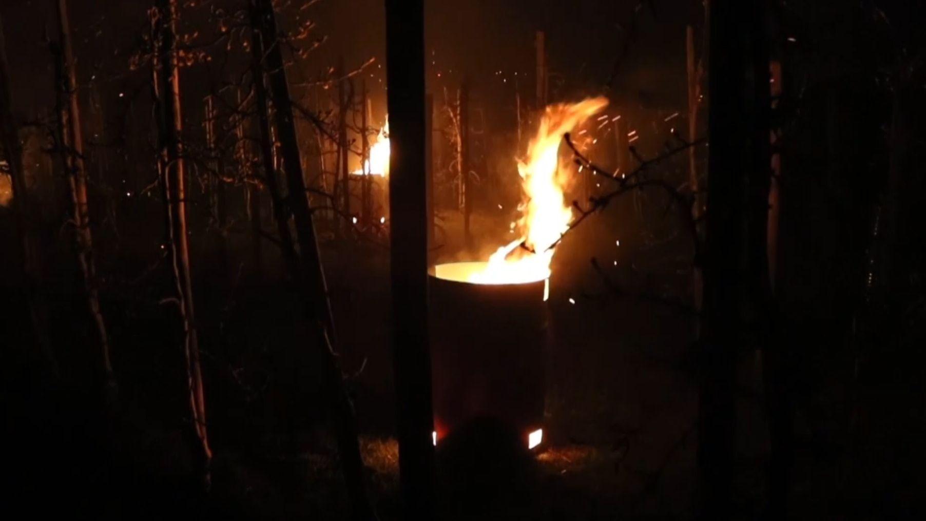 Feuer auf Obstplantagen am Bodensee