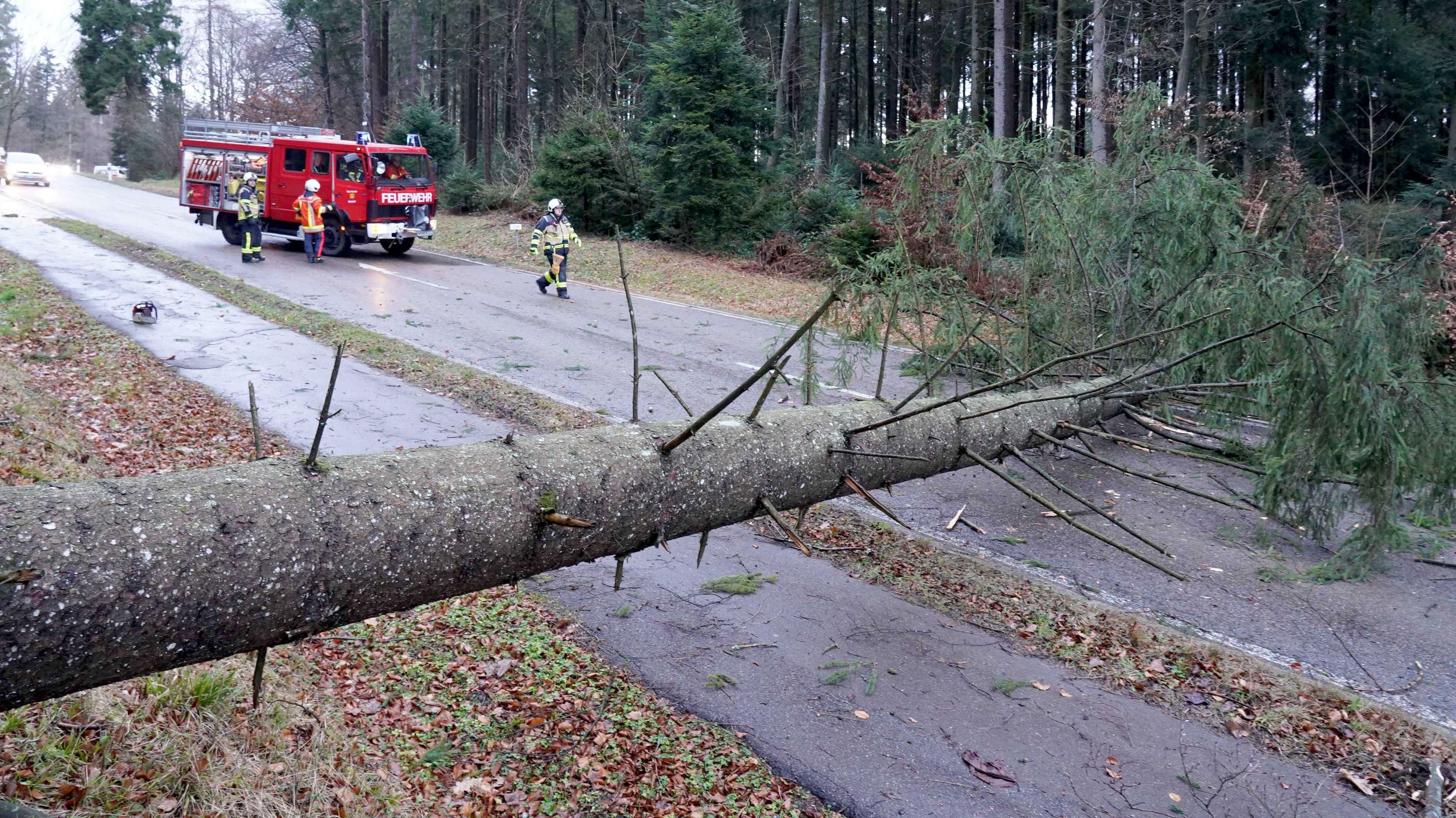 Einsatzkräfte der Feuerwehr arbeiten an einer Unfallstelle bei Kaiserbach, an der nach einem Sturm ein Baum auf eine Straße gestürzt ist