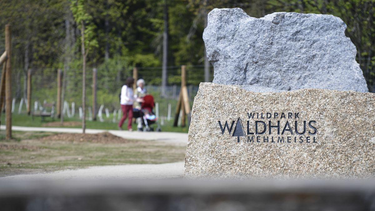 Ausflügler spazieren durch den Wildpark Waldhaus Mehlmeisel