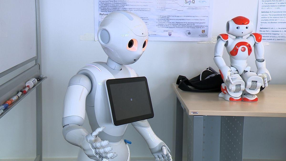Ein Roboter im Labor von Diedrich Wolter