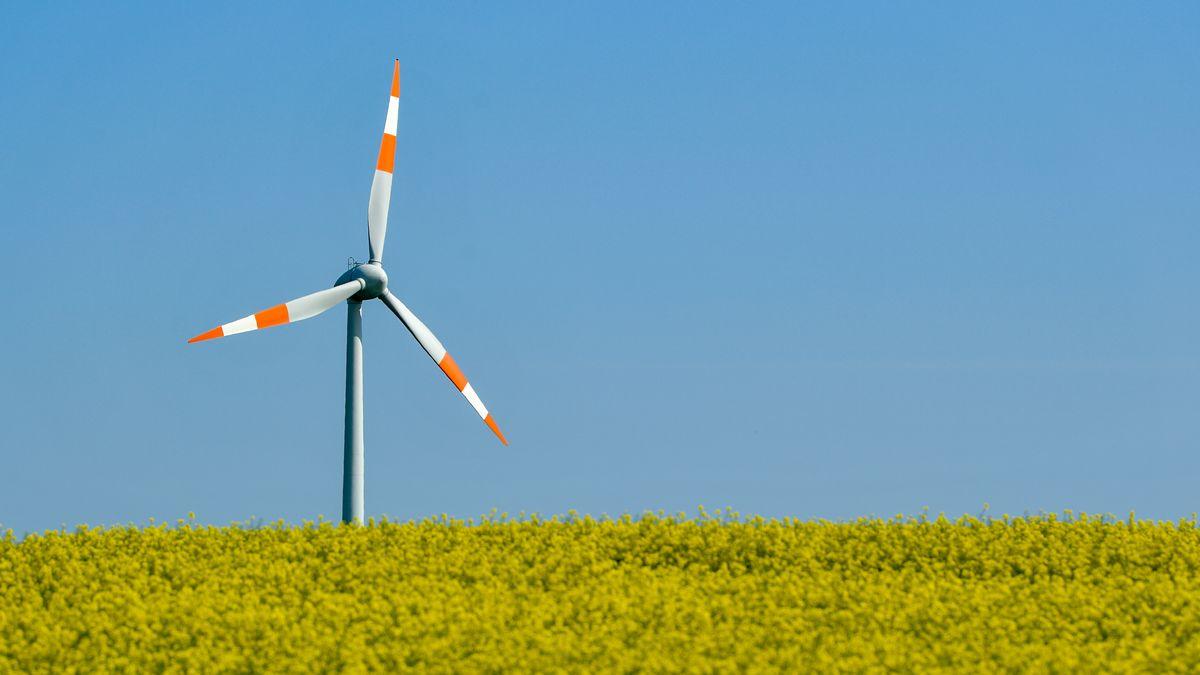 Eine Windenergieanlage hinter einem Rapsfeld (Archivbild).